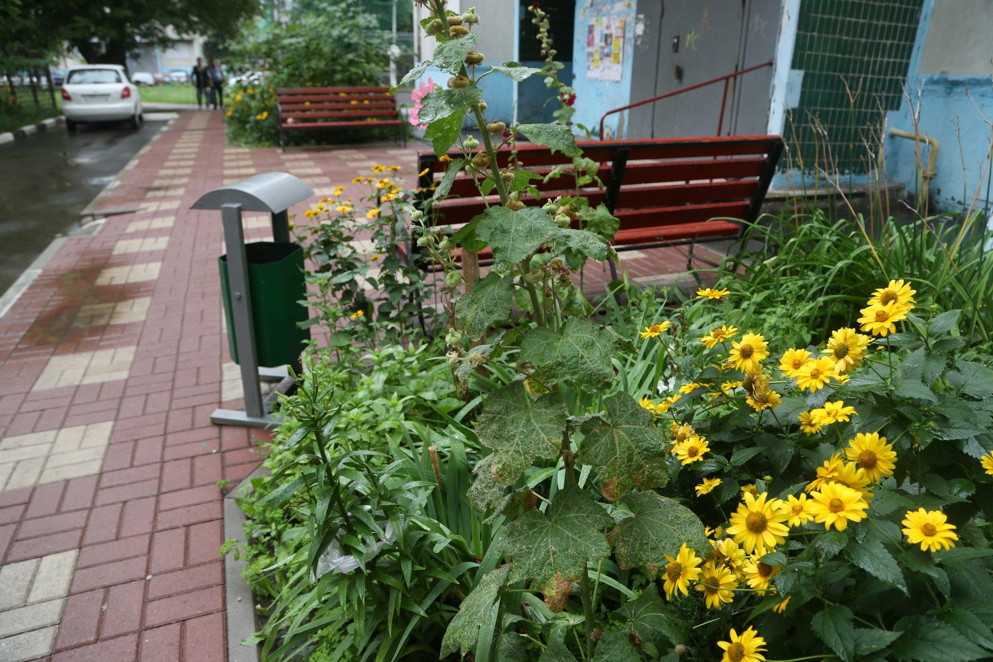 КПасхе дворы Белгорода превратят всады