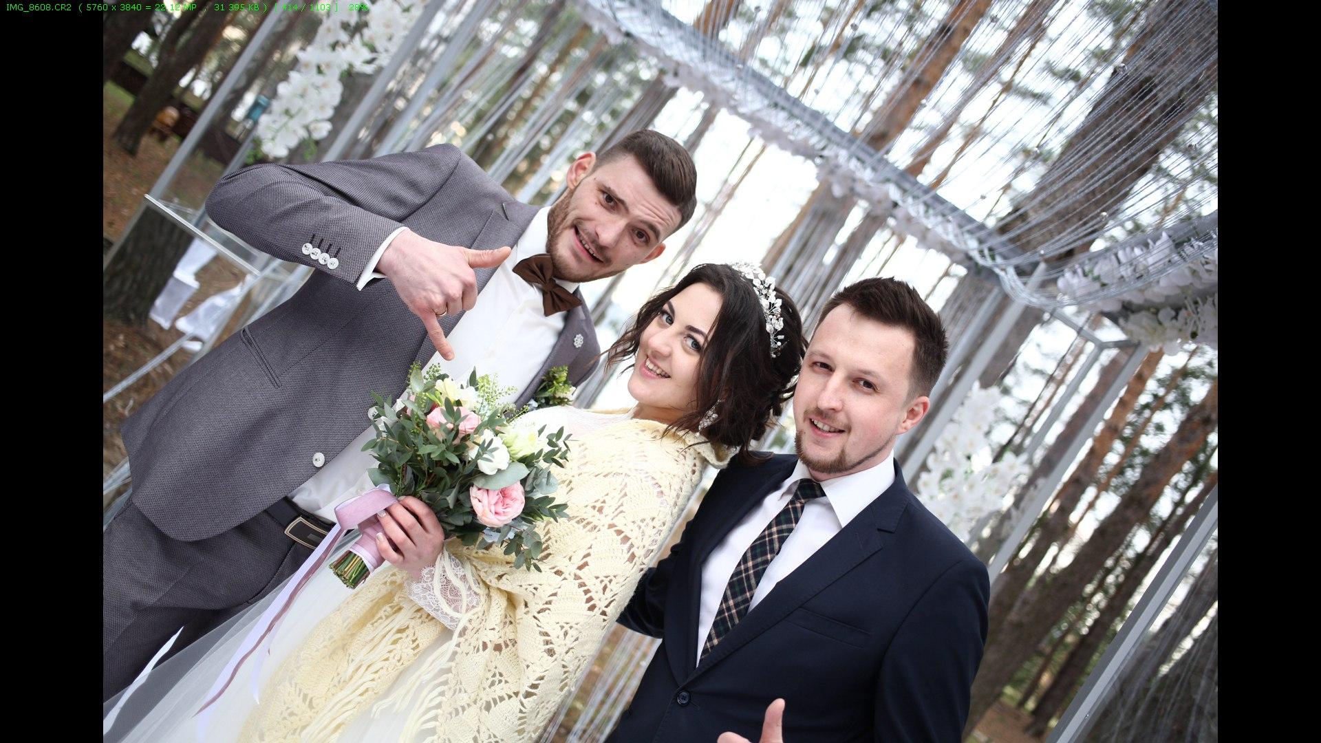 Поздравление на свадьбе если мы в ссоре фото 609